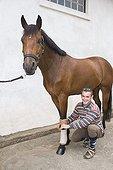 Palefrenier soignant et préparant un Cheval de selle France ; Il pose des bandes de repos sur les pattes du cheval