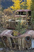Old vehicles at North Canol Road Yukon Canada ; They were used for building and maintaining this road during the II World War
