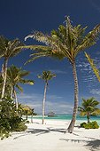 Beach on Maldive Island Kandooma South Male Atoll Maldives