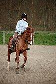 Young rider galloping on horseback France