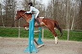 Young rider jumping an obstacle with his Horse France