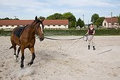 Working with a horse runs in France