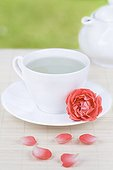 Cup of Rose herbal tea and Rose in Saucer