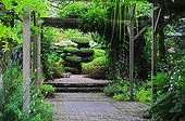 Pergola and topiary of yew in a garden