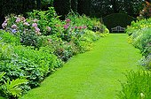 Garden path and mixed-border in bloom in a garden