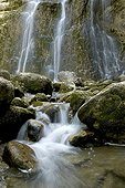 Cascades of Hedgehog in the Jura France