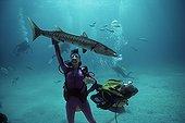 Plongeur avec un Barracuda aux Bahamas