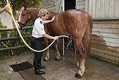 Officer showering his horse French Mounted Police