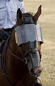 Horse fitted with a visor Unity of the French Mounted Police
