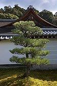 Zen garden in the temple Nanzen-ji in Kyoto Japan