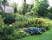 Garden through the seasons Summer Le Clos du Coudray ; Hosta X tardiana 'Halcyon'