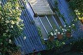 Window Garden entitled 'A garden attic' France ; Designer: Hugh Peuvergne