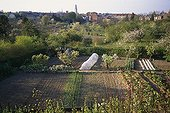 Home gardens of Bapaume St. Acheul Picardie France ; Tower Perret in the background