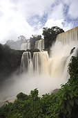 Bossetti Salto Iguazu Falls Argentina