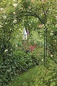Rose 'Robin Hood' and Climbing Rose 'Alister Stella' ; Le jardin des lianes