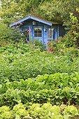 Vegetable Garden and Blue Hut Le Jardin des Lianes ; Le jardin des lianes