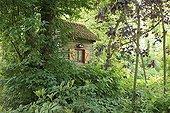Cabin undergrowth Le Jardin des Lianes France ; Le jardin des lianes