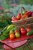 Table of fruits and vegetables in herb garden France