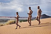 """Male San hunters armed with traditional bow and arrow ; In the private reserve named """"N/a'an ku sê"""", welfare programs and health support converge to maintain populations of Bushmen in good health and to reintroduce the wild Cheetahs. This nomadic group of hunter-gatherers has a history dating back over 20,000 years. Their close relationship and perfect their knowledge of animals allowed to live and feed in the deserts of southern Africa."""
