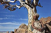 """Ederly San woman leaning against quiver tree Namibia ; In the private reserve named """"N/a'an ku sê"""", welfare programs and health support converge to maintain populations of Bushmen in good health and to reintroduce the wild Cheetahs. This nomadic group of hunter-gatherers has a history dating back over 20,000 years. Their close relationship and perfect their knowledge of animals allowed to live and feed in the deserts of southern Africa."""