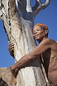 """Ederly San man hugging quiver tree Namibia ; In the private reserve named """"N/a'an ku sê"""", welfare programs and health support converge to maintain populations of Bushmen in good health and to reintroduce the wild Cheetahs. This nomadic group of hunter-gatherers has a history dating back over 20,000 years. Their close relationship and perfect their knowledge of animals allowed to live and feed in the deserts of southern Africa."""