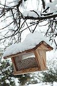 Bird feeding dish on a tree under snow in a garden
