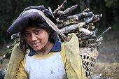 Child carrying firewood Nepal Himalayas