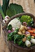 Harvest of vegetables in a basket