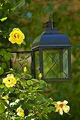 Lamp of garden in Provence France