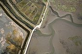 Aerial view of Salt Marsh Gulf of Morbihan France ; Old abandoned salt marshes finding an activity and color of yesteryear