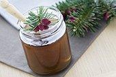 Fir honeydew in a clear jar and fir twig