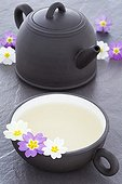 Cup of Primrose Tea and Tea pot and Primrose flowers