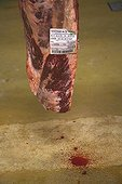 Label traceability of beef carcass France ; Wholesale Meat