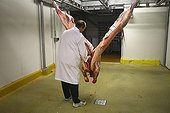 Man cutting a carcass with a knife France ; Wholesale Meat