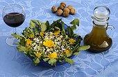 """Salade printanière aux Pâquerettes et aux Pissenlits France ; Salade """"désherbage de jardin"""" aux pâquerettes et aux pissenlits. Cette jolie salade de début du printemps est très facile à réaliser. Il suffit de ramasser dans son jardin """"bio"""" quelques jeunes feuilles de pâquerettes et de pissenlits que l'on prend bien soin de nettoyer, et un certain nombre de fleurs et de boutons. Elle se sert avec une vinaigrette et quelques cerneaux de noix. Accompagnée d'un bon vin rouge, elle est délicieuse!!! On peut aussi y rajouter un peu d'ail frais."""