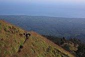 Bearer on volcano Gunung Rinjani Senaru Lombok Indonesia