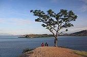 Pulau Messah facing Komodo NP Sea of  Flores Indonesia