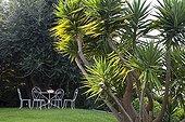 Garden Mediterranean Riviera France