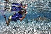 Children watching a Blacktip Reef Shark Tahaa Polynesia