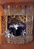 Poet's jasmine bouquet