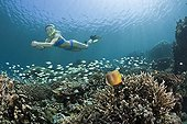 Free diving over Coral Reef Bali Indonesia