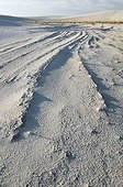 Eroded ridges of compacted gypsum White Sands NM USA