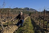 Weeding through the ranks in fall footwearProvence France ; Character: Andrew  Hall, Domaine des Bernardins