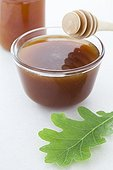 Ramekin of oak honey and oak leaf