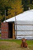 Yurt from Mongolia ; Association Transhumances