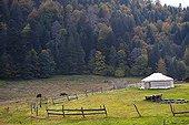 Yourte mongole en lisière de forêt ; Association Transhumances