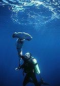Requin-marteau vivant rejeté à la mer pour s'y noyer ; Pêché pour prélèvement des ailerons, le requin est rejeté vivant à la mer