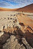 Eroded soil Dead Vlei Sossusvlei Namib Desert Namibia