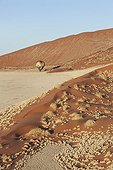 Hot-air balloon over the Namib desert. Namib-Naukluft NP