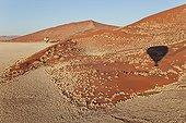 Hot-air balloons over the Namib desert. Namib-Naukluft NP